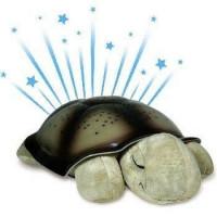 Nočná korytnačka zelená