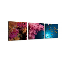 3 dielne obrazové hodiny Pod vodou, 35x105cm