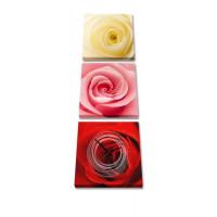 3 dielne obrazové hodiny, Ruže, 35x105cm