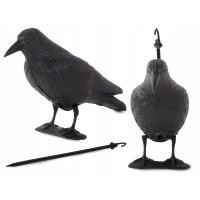 Plašič vtákov čierny havran VG 1436